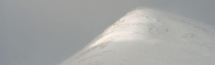 Glimpse of Snowy Light