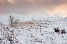 Last Light, Lochan na Stainge